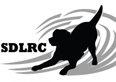 2020 Feb 15 & 16 SDLRC San Diego, CA