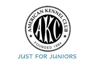 2021 Jan Junior Showmanship Series Arizona